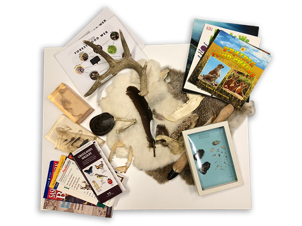 Animals and Their Environment Loan Kit
