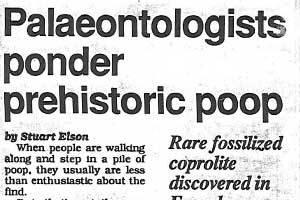 Palaeontologists ponder prehistoric poop